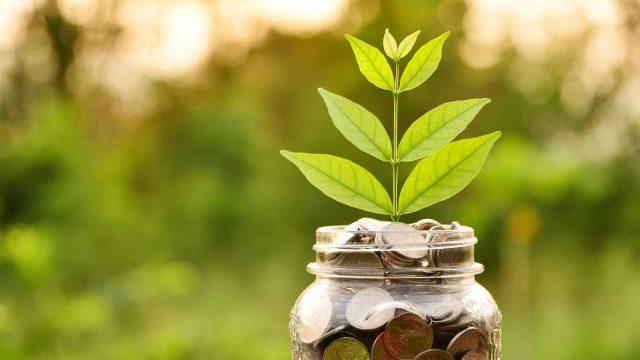 Kestävä kehitys pitää yrityksen elinvoimaisena.