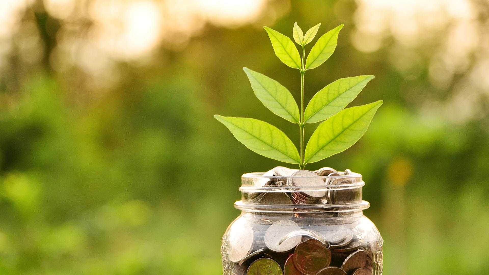 Kestävällä kehityksellä kestävää kasvua.
